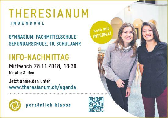 Info-Nachmittag, 28. Nov., Theresianum Ingenbohl