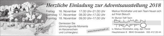 Adventsausstellung, 16./17./18. Nov., Blumen Träff