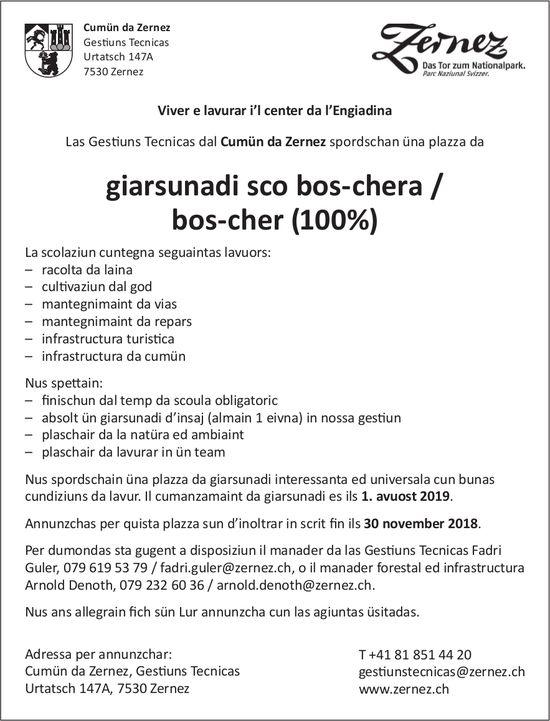 Las Gest. Tecnicas dal Cumün da Zernez spordschan üna plazza da giarsunadi sco bos-chera/ bos-cher