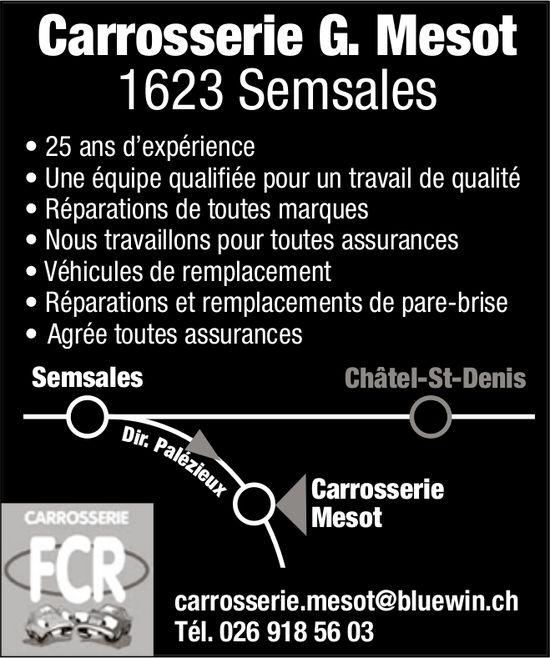 Carrosserie G. Mesot, Châtel-St-Denis, 25 ans d'expérience