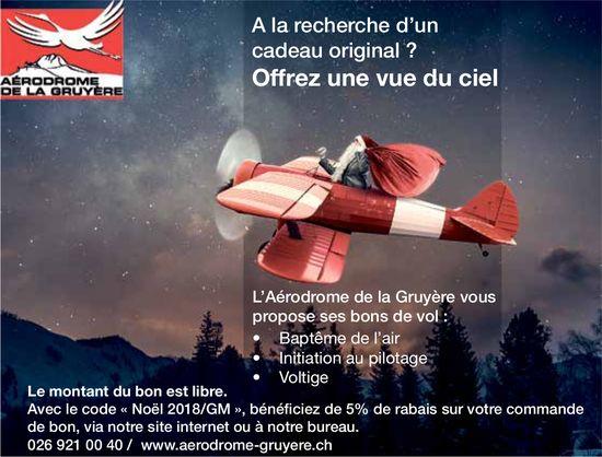 L'Aérodrome de la Gruyère- A la recherche d'un cadeau original ? Offrez une vue du ciel