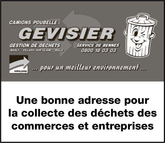 CAMIONS POUBELLE GEVISIER - Une bonne adresse pour la collecte des déchets des commerces