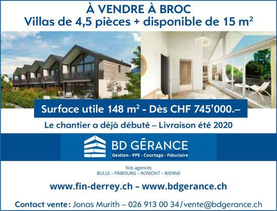 Villas 4.5 pièces, Broc, à vendre