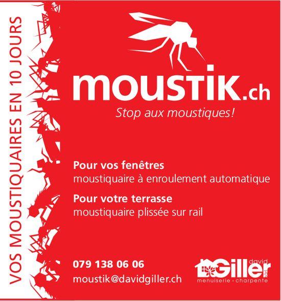 David Giller - Vos moustiquaire en 10 jours