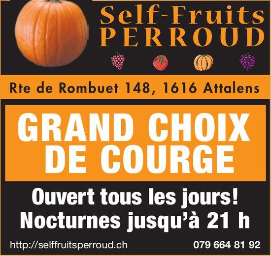 Self-Fruits Perroud, Attalens, Grand choix de courge