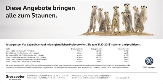 Grosspeter Garagen - Diese Angebote bringen alle zum Staunen.