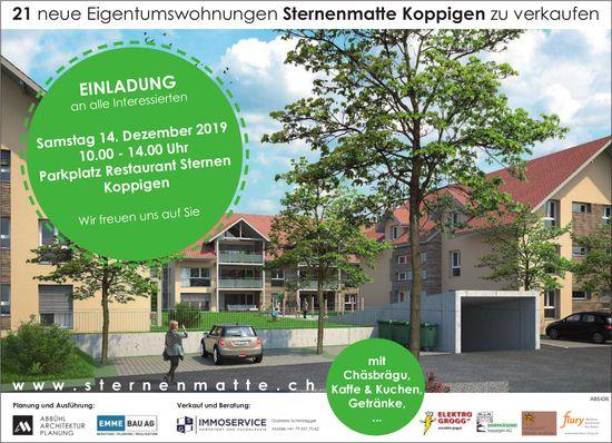 21 neue Eigentumswohnungen Sternenmatte Koppigen zu verkaufen: Einladung am 14. Dezember