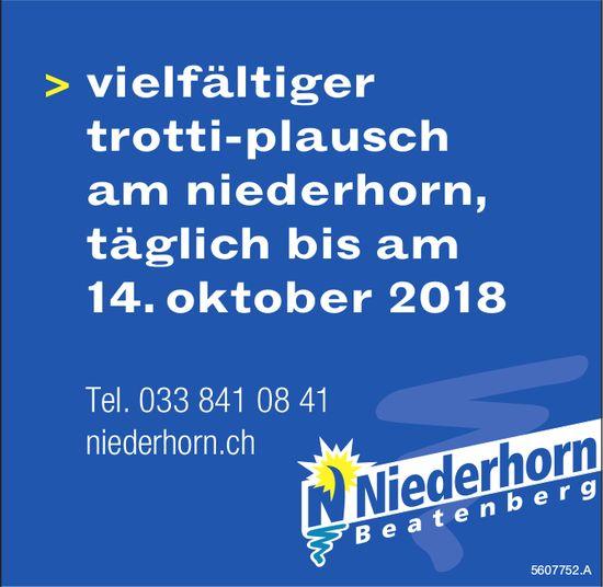 Niederhorn Beatenberg - Vielfältiger Trottiplausch am Niederhorn, täglich bis am 14. Oktober 2018