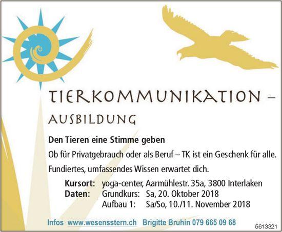 Tierkommunikation-Ausbildung - Den Tieren eine Stimme geben / Ab 20. Oktober