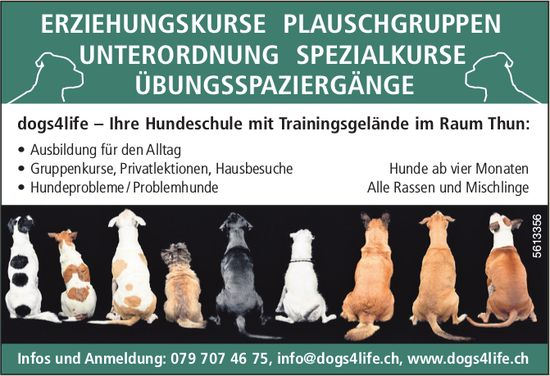 dogs4life – Ihre Hundeschule mit Trainingsgelände im Raum Thun