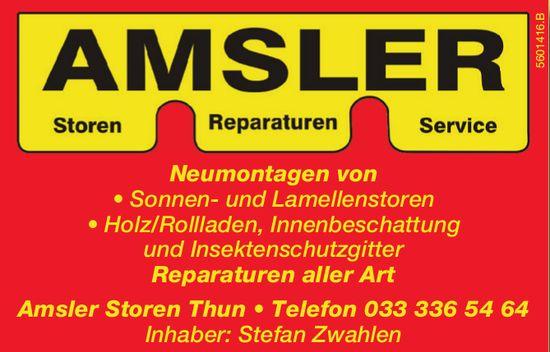 Amsler Storen / Reparaturen / Service
