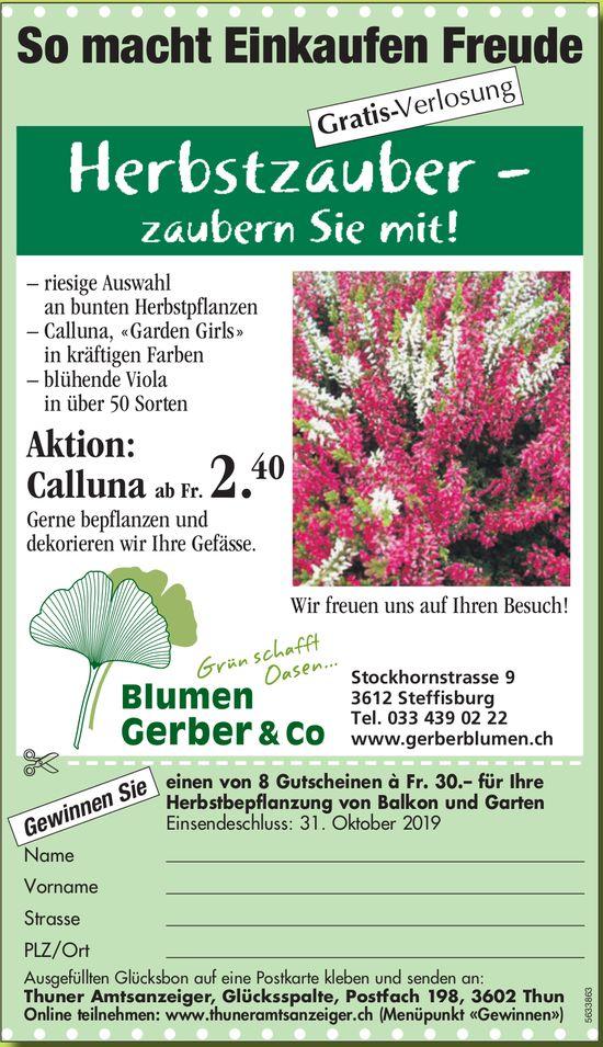 Blumen Gerber & Co. - Herbstzauber, zaubern Sie mit!