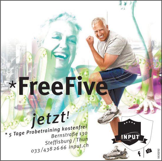 Input, Free Five, 5 Tage Probetraining, Steffisburg