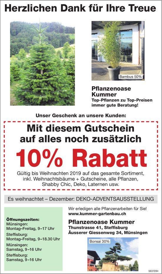 Pflanzenoase Kummer - Herzlichen Dank für Ihre Treue: noch zusätzlich 10% Rabatt