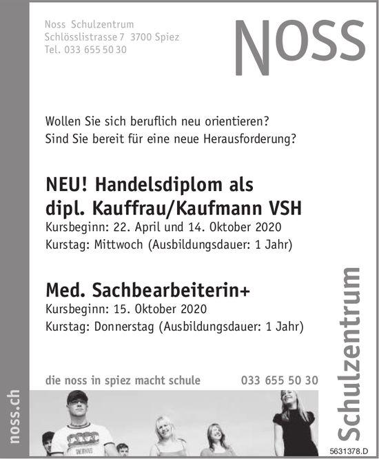 NEU! Handelsdiplom als dipl. Kauffrau/Kaufmann VSH, Noss Schulzentrum, Spiez
