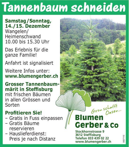 Blumen Gerber & Co. - Tannenbaum schneiden, 14./15. Dezember