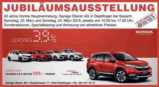 Jubiläumsausstellung am 23. und 24. März in der Garage Oberer in Diepflingen