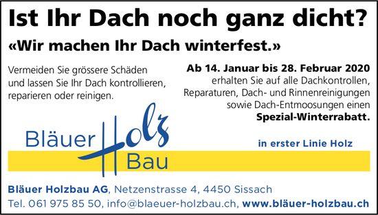 «Wir machen Ihr Dach winterfest.», Bläuer Holzbau AG,  Sissach