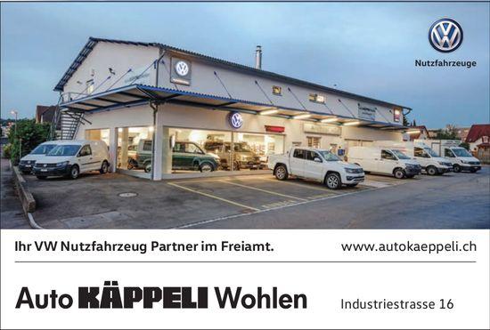 Auto KÄPPELI Wohlen, Ihr VW Nutzfahrzeug Partner im Freiamt