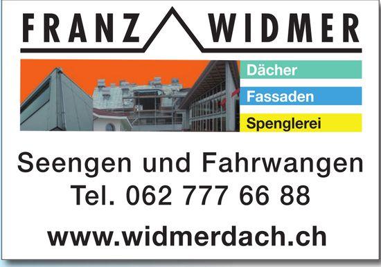 Franz Widmer in Seengen und Fahrwangen - Dächer, Fassaden und Spenglerei