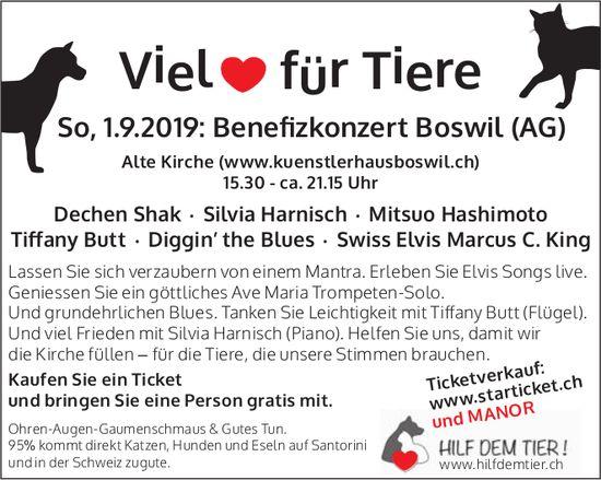 Benefizkonzert  am 1. September in Boswil