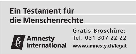 Ein Testament für Ein Testament für die Menschenrechte  - Amnesty International