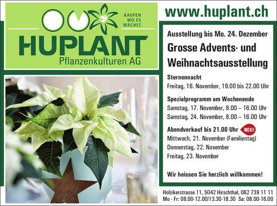 Grosse Advents- und Weihnachtsausstellung, 16. - 23. November, HUPLANT Pflanzenkulturen AG