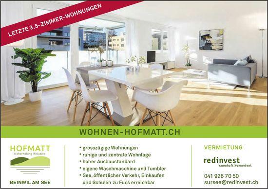 Letzte 3.5-Zimmer-Wohnungen, Hofmatt, Beinwil am See, zu vermieten