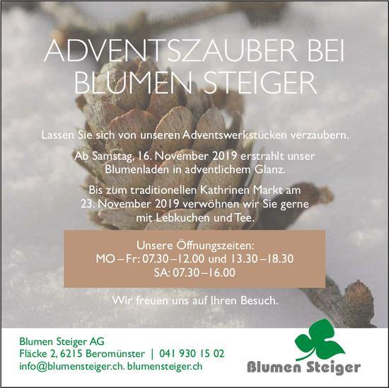 Blumen Steiger AG, Beromünster - ADVENTSZAUBER BEI BLUMEN STEIGER