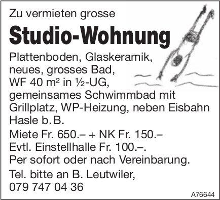 Studio-Wohnung neben Eisbahn Hasle b. B. zu vermieten