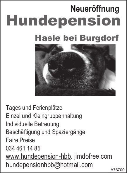 Neueröffnung Hundepension, Hasle bei Burgdorf