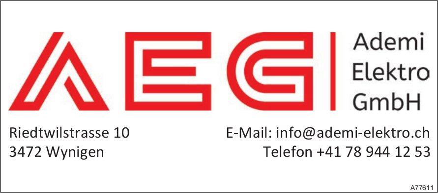 Ademi Elektro GmbH, Wynigen