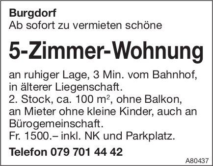 5-Zimmer-Wohnung, Burgdorf, zu vermieten