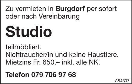 Studio teilmöbliert in Burgdorf zu vermieten