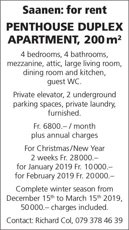 Penthouse Duplex Apartment for rent, Saanen