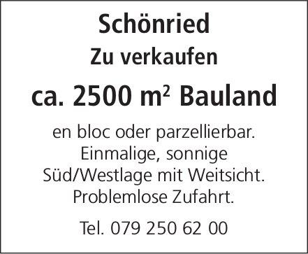 ca. 2500 m² Bauland in Schönried zu verkaufen