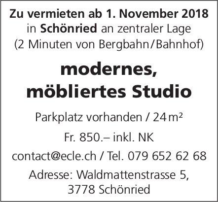 Modernes, möbliertes Studio, Schönried, zu vermieten