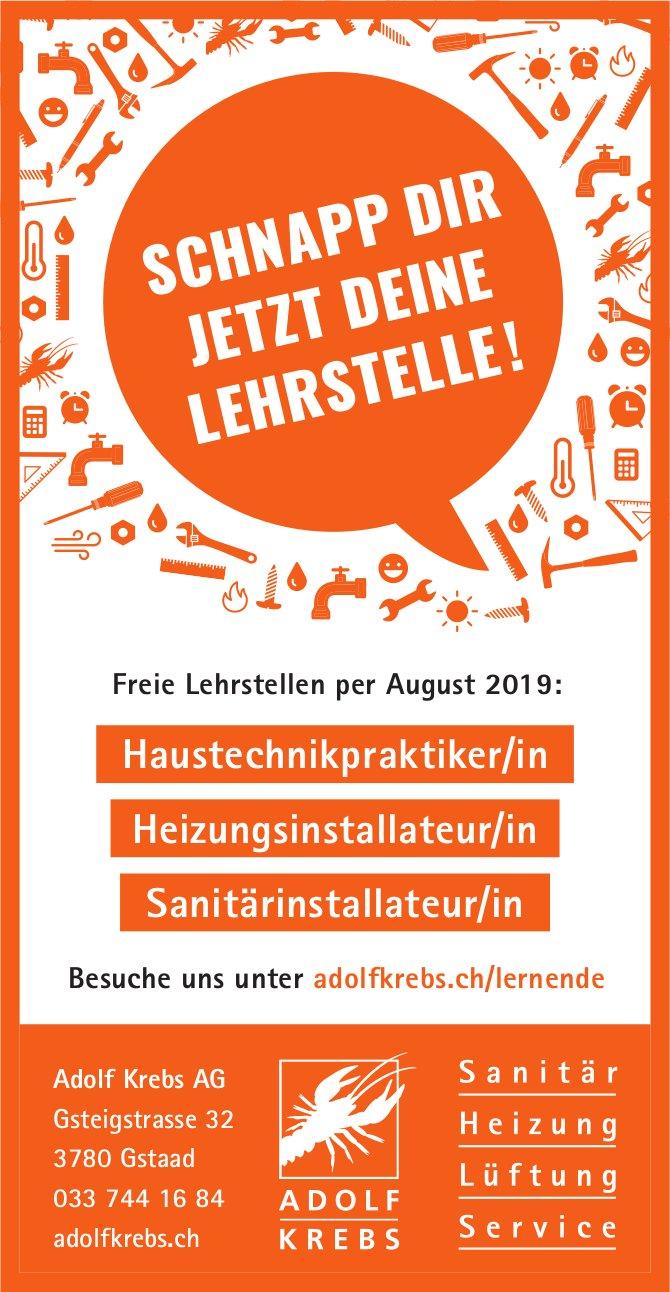 Freie Lehrstellen per August 2019, Adolf Krebs AG, Gstaad