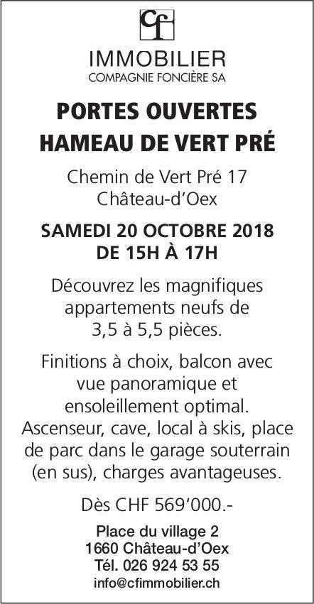 Appartements neufs de 3,5 à 5,5 pièces, Château-d'Oex - Portes ouvertes, 20 octobre
