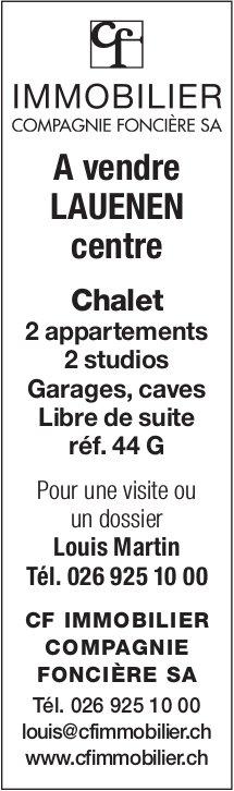 Chalet, 2 appartements & 2 studios, garages, caves, Lauenen, à vendre