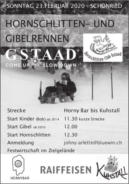 HORNSCHLITTEN– UND GIBELRENNEN, 23. Februar, Schönried