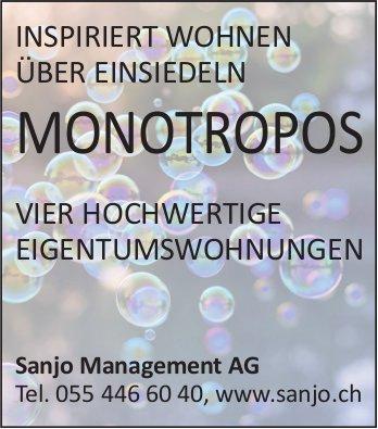 Monotropos - Vier hochwertige Eigentumswohnungen über Einsiedeln