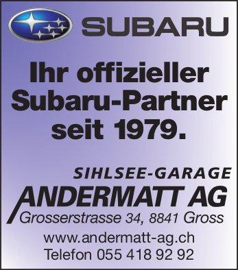 Sihlsee-Garage Andermatt AG, Gross