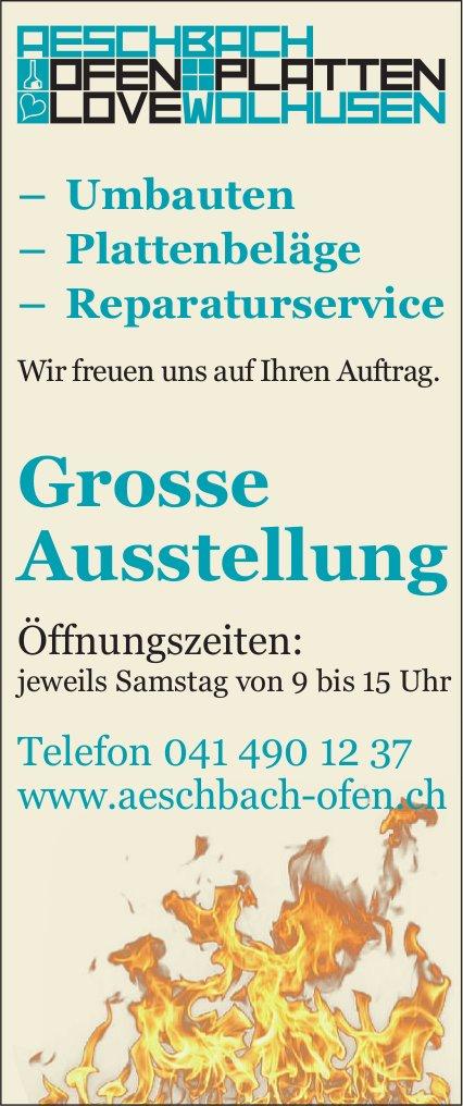 Grosse Ausstellung, Aeschbach Ofen & Platten, Wolhusen