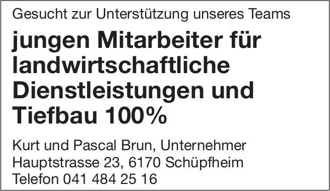 Mitarbeiter für landwirtschaftliche Dienstleistungen & Tiefbau 100%, Kurt & Pascal Brun, Schüpfheim