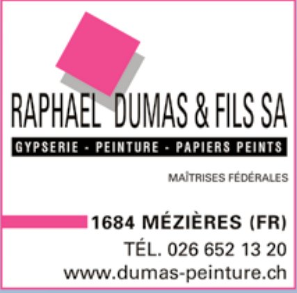 RAPHAEL DUMAS & FILS SA, MÉZIÈRES, GYPSERIE -  PEINTURE -  PAPIER PEINTS