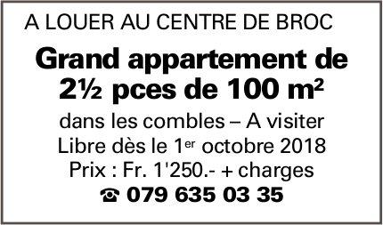 Grand appartement, 2.5 pièces, Broc, à louer