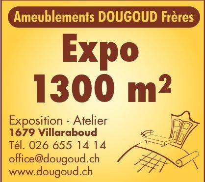 Ameublements Dougoud Frères, Villaraboud, Expo 1300 m2