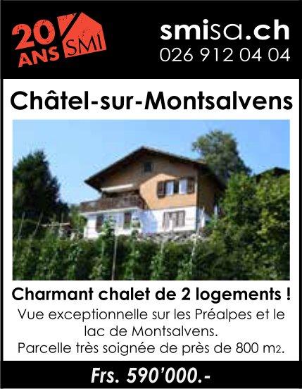 Charmant chalet de 2 logements, Châtel-sur-Montsalvens, à vendre