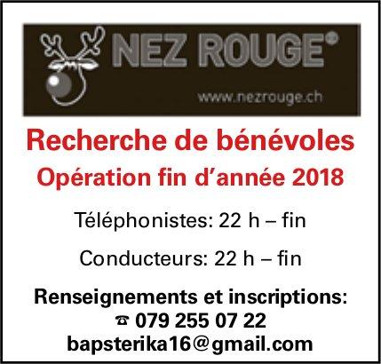 NEZ ROUGE - Recherche de bénévoles Opération fin d'année 2018